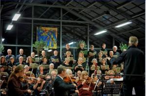 Haveoasen Haydn 2013